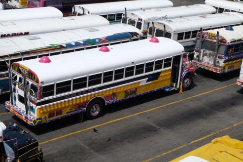 Bus Panamá City