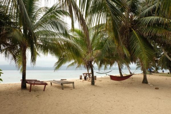 Hamac et palmiers sur l'île Iguana