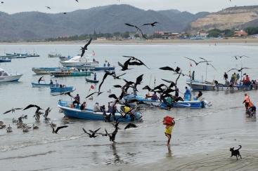 Pêcheur à Puerto Lopez
