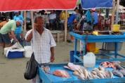 Marché aux poissons à Puerto Lopez