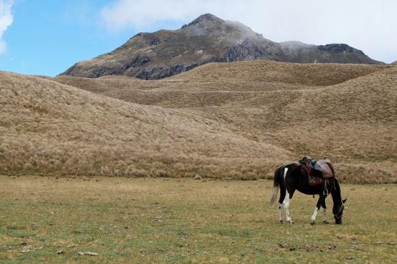 Le sommet du Yana Urcu