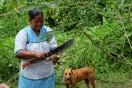 Gladys coupe le manioc, communauté Siona