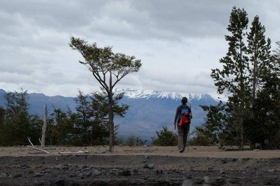 Sentier El Solitario, Parc National Vicente Perez Rosales