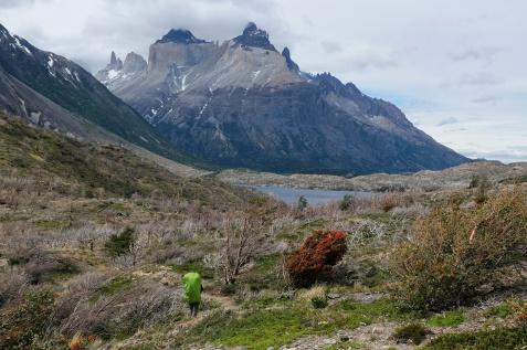 PN Torres Del Paine