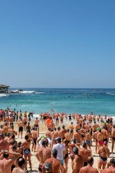 Nageurs, Bondi beach
