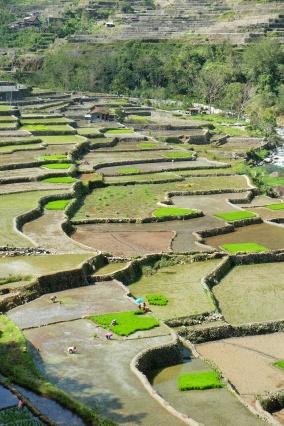 Terrasses, Apaho