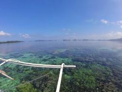 Fonds coraliens