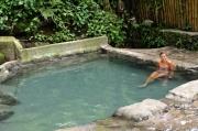 Hot spring hibok hibok