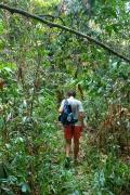 Clément dans la jungle, Koh Ta Kiev