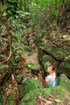 Marche dans la jungle, vallée d'harau