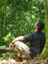 Fabrice cherche les orangs ôutans