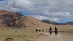 des sherpas revenant d'un trek